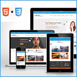 Website Development Ghaziabad